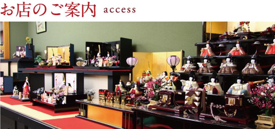 access-image